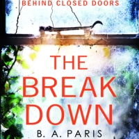 The Breakdown by B.A Paris